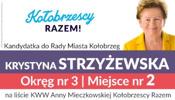 Wybory Strzyżewska